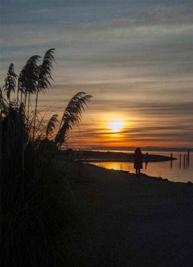Lonley at sunset