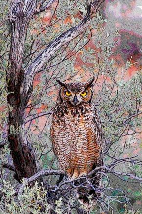 OWL4WEB copy